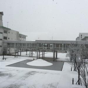 仁愛大学にも初雪です‼︎