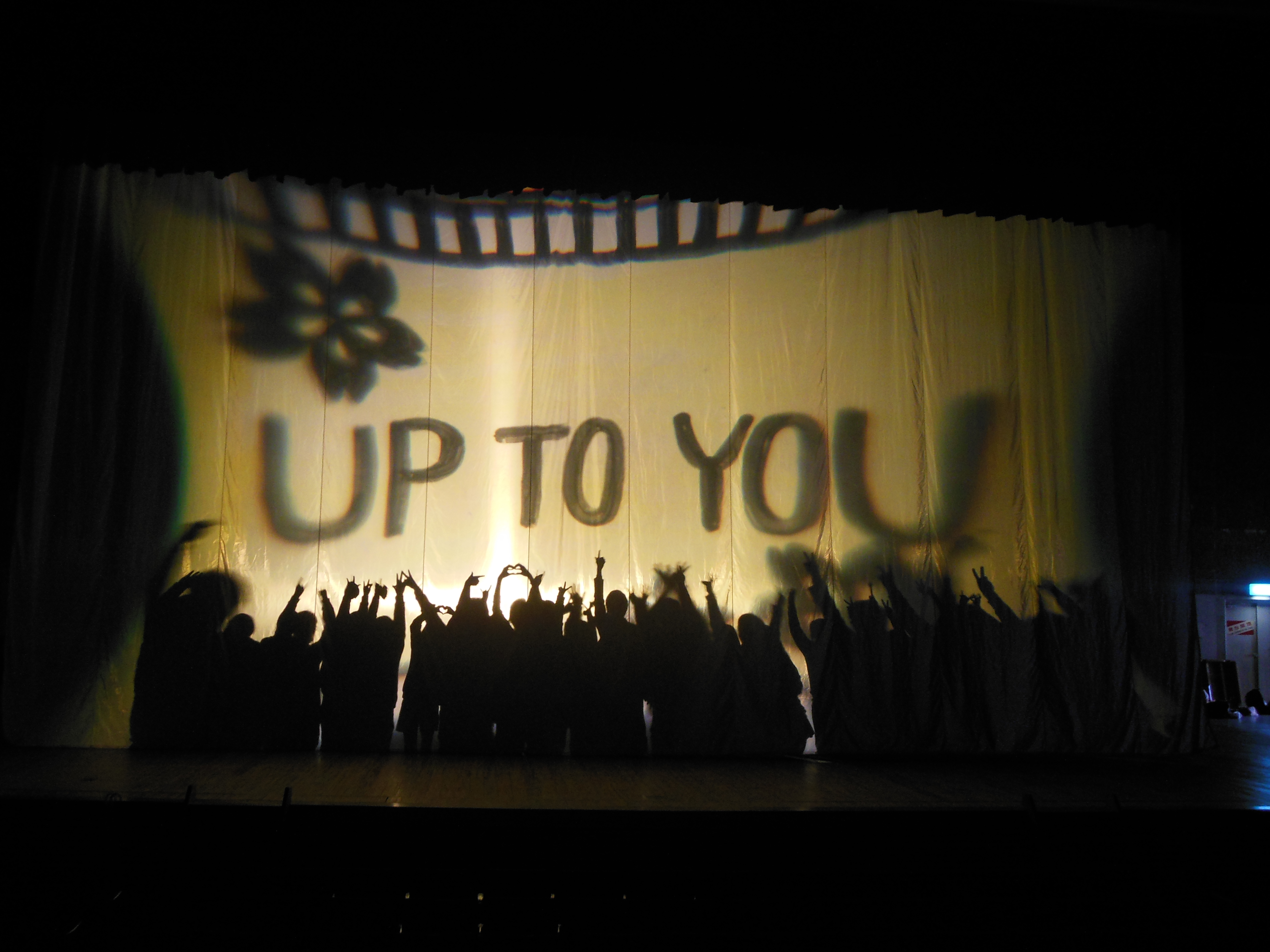 Up to you.JPG