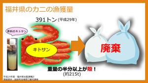 福井ビジネスプランコンテスト2018発表用.png