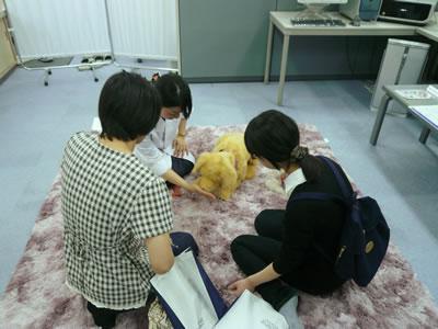 news-photo1.jpg